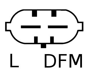 L DFM